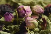 Loose Teas & Flowers